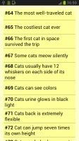 《 Amazing cat facts 》截图欣赏