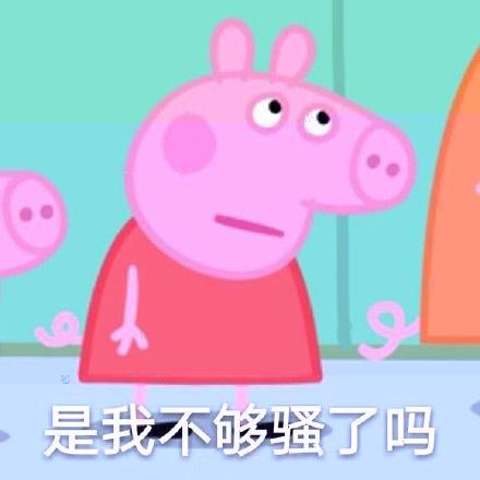 小猪佩奇是我不够骚嘛表情包