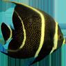 Ocean Defender
