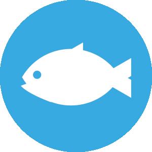 u9lyfish