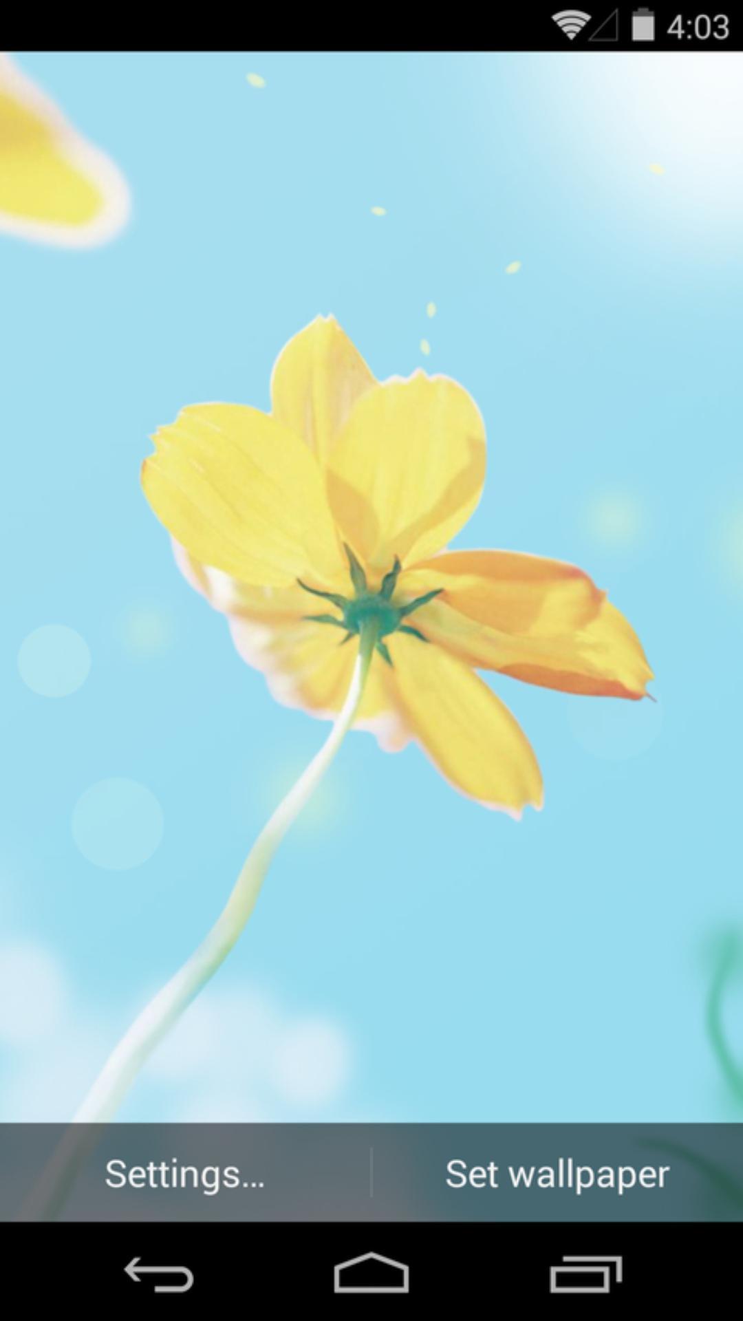 《 春天里 》截图欣赏