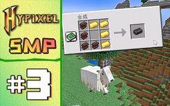 钻石下界合金 1.17极限生存 第三集 Hypixel SMP