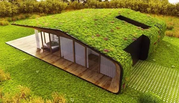 屋顶上的空中花园,醉了