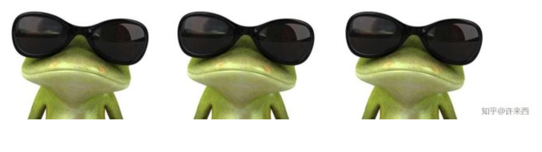 一个青蛙世界