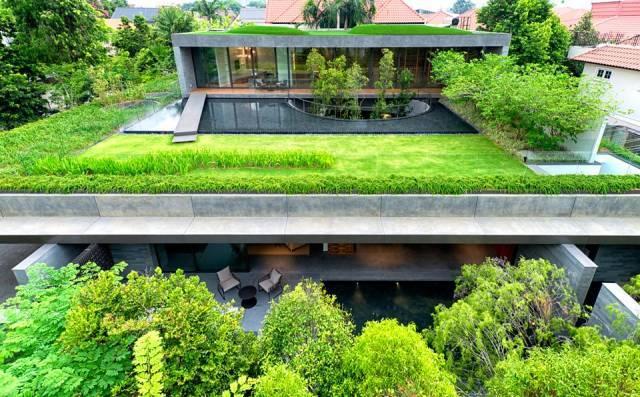 最好是利用屋顶种植一些自己喜爱的植物来改造自己的庭院。   新月绿家阳台有机蔬菜创新地采用了6+1栽培模式,即草碳土、恒温恒湿、防酸雨、优质种、物理驱虫、有机肥配合管理人员的精心照料,实现了有机蔬菜的低碳、无公害、精细化栽培。并且按照时令种植,不违反自然规律.  草碳土来作为蔬菜的种植土壤,是新月绿家有机蔬菜的一大特色和亮点。这种土来自东北长白山脚下,学名为泥炭,是植物枯死后,逐年堆积而成的有机质矿体,是一种优良的栽培介质和土壤改良产品,具有天然、无污染的特点。 杭州新月农业科技有限公司 办公地址: