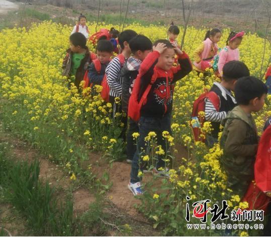 博文国际幼儿园开展大班春游活动