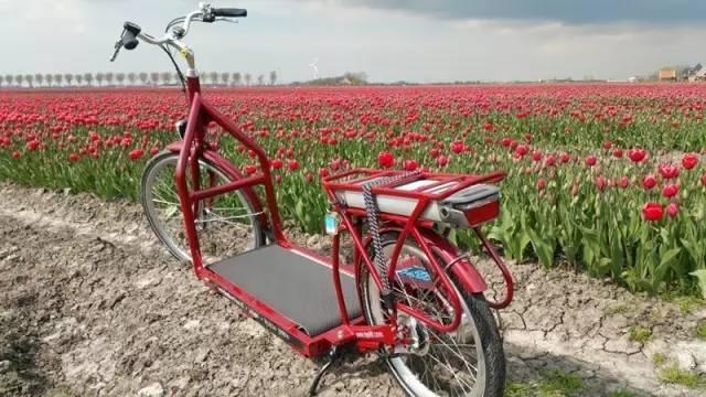荷兰大叔发明的走路自行车, 治好全世界上班族的通病! - 真光 - 真光 的博客
