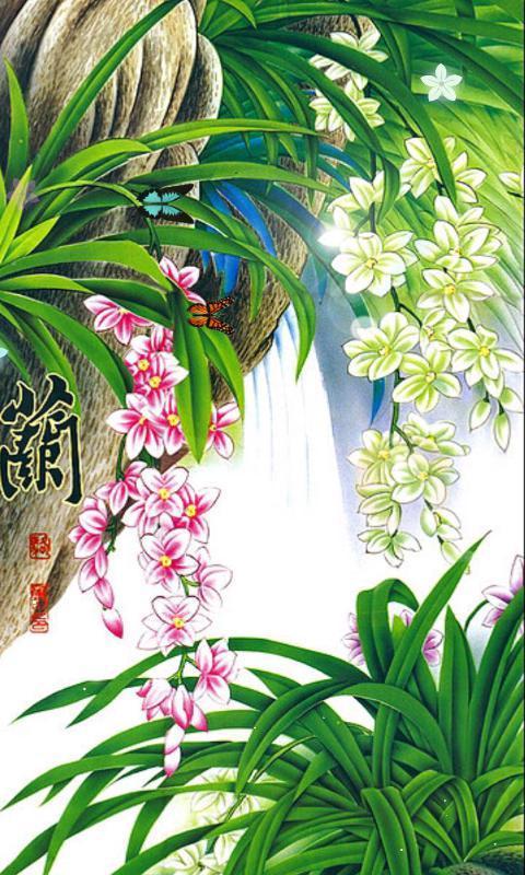 《 幽兰飘香-绿豆动态壁纸 》截图欣赏