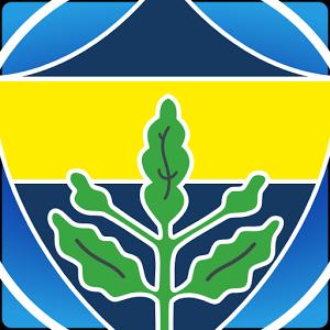 Fenerbahçe by Fenersk.com