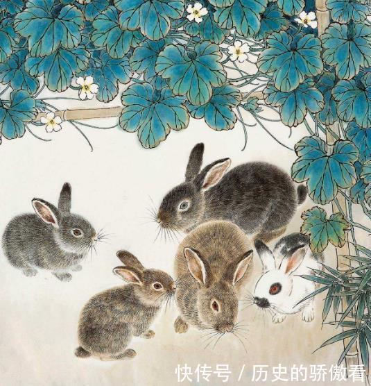 天生懦夫,只会忍受,被人欺负还不敢反抗的3肖女,尤其生肖兔