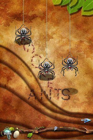 《 口袋蚂蚁 》截图欣赏