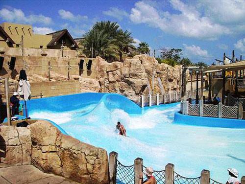 在迪拜水上乐园不仅可以体验刺激的水上娱乐活动