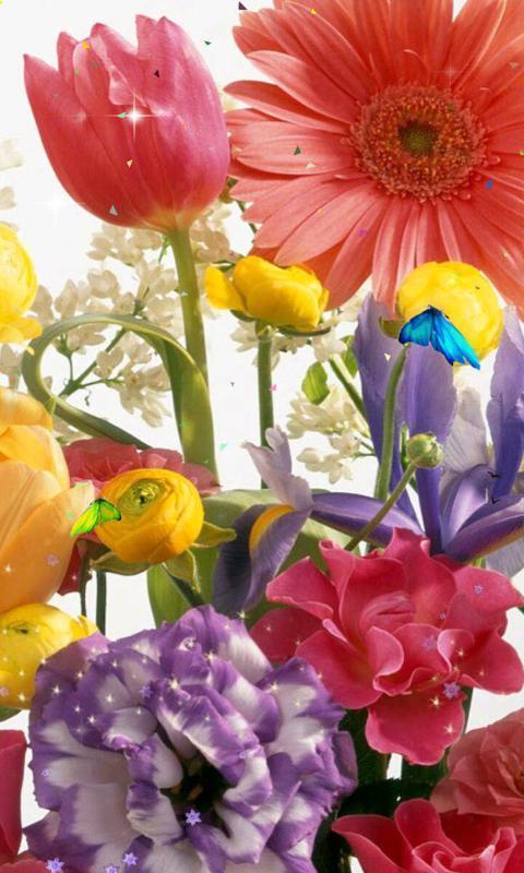 《 花语系列主题动态壁纸 》截图欣赏