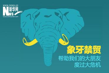 非洲象15年内将完全灭绝!