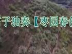 笛子独奏视频大全 笛子独奏【枣园春色】