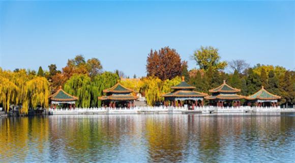 北京图见|秋之余韵尚存 冬已粉墨登场
