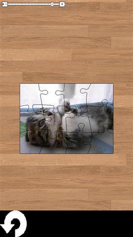 《 电影的猫拼图 》截图欣赏