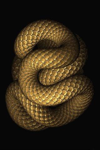 蛇动态壁纸官网免费下载