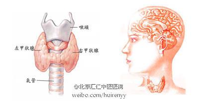 二,甲状腺功能检查 ①基础代谢率降低,常在-30—-45%以下;②甲状腺摄