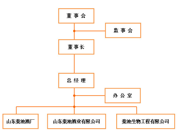 公司组织架构 编辑本段