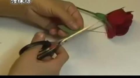 手工制作大全 纸折花-折纸玫瑰花 详细步骤-_折纸视频教程大全