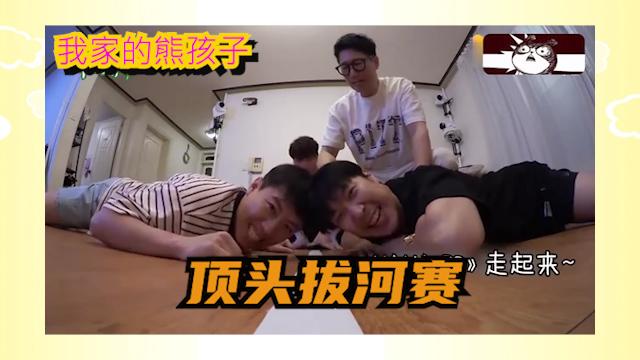 我家的熊孩子:韩国男星顶头拔河大赛!看着都疼!