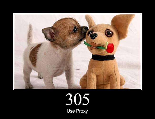 305 Use Proxy