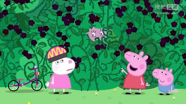 《小猪佩奇第4季动画片》黑木灌木丛