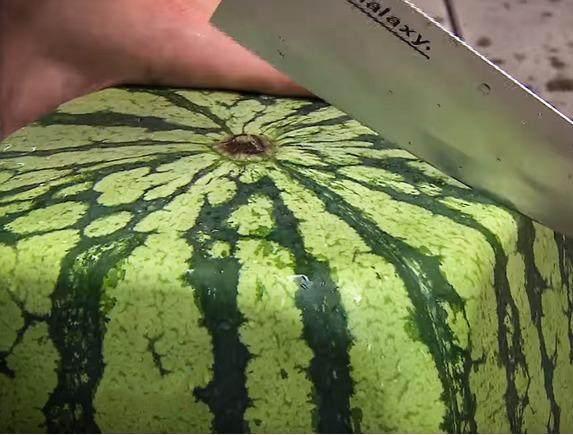 土豪花54000元买方形西瓜尝鲜 切开后看到的一幕差点哭出来... - 周公乐 - xinhua8848 的博客