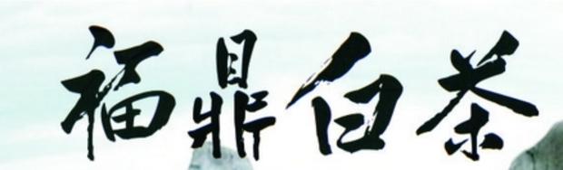 福鼎白茶四个字是什么字体图片