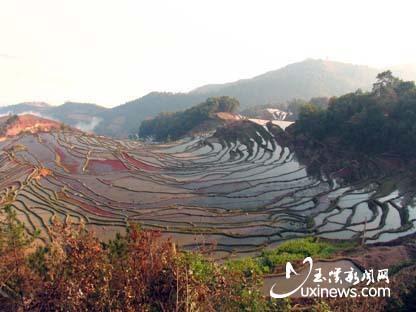 元江哈尼族彝族傣族自治县