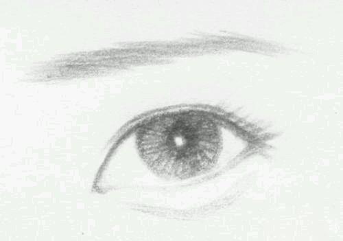 丹凤眼和杏仁眼的区别