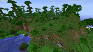 Jungle Edge M.jpg