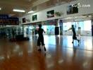 芭蕾初中舞蹈形体传奇语文教案v芭蕾小石潭记图片
