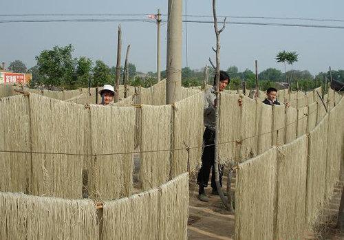 陕西富平县是我的故乡