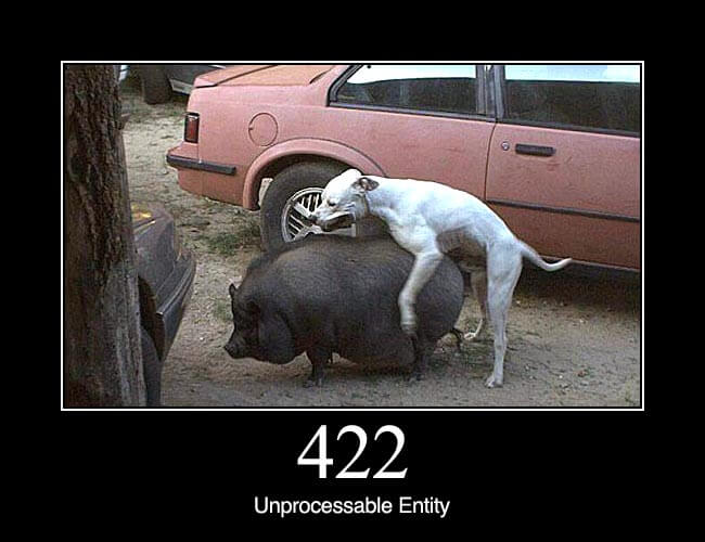 422 Unprocessable Entity