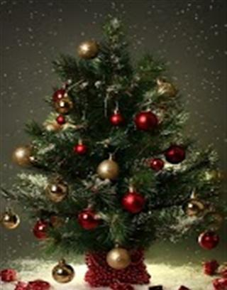 《 Beautiful Christmas Tree HD Live Wallpapers 》截图欣赏