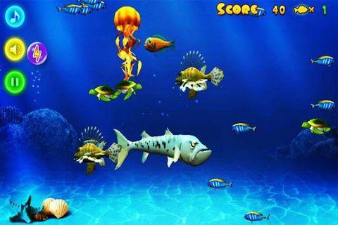 简单又可爱的海底小鱼