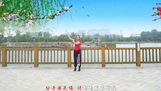 睢县贸易广场舞—一帆风顺《情歌天下唱》编舞:云裳